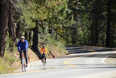 Descending from Yuba Pass through the Tahoe National Forest