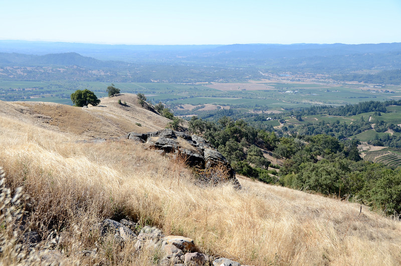 Alexander Valley from the Geysers