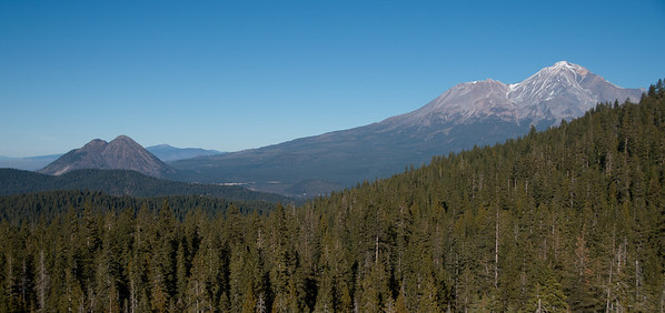 Mt Shasta and Shastina tower over Black Butte.