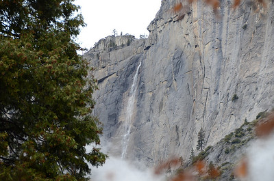 After a bit of rain overnight, Yosemite Falls shows a little of what it can do.