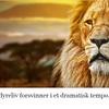 Verdens dyreliv forsvinner