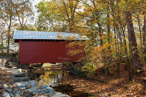 Roddy Creek in Autumn