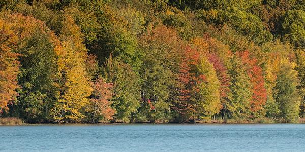 Autumn at Piney Run