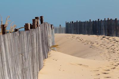 Delmarva Dunes