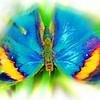 airbrush-indian-leaf-bflyh-DSC09920