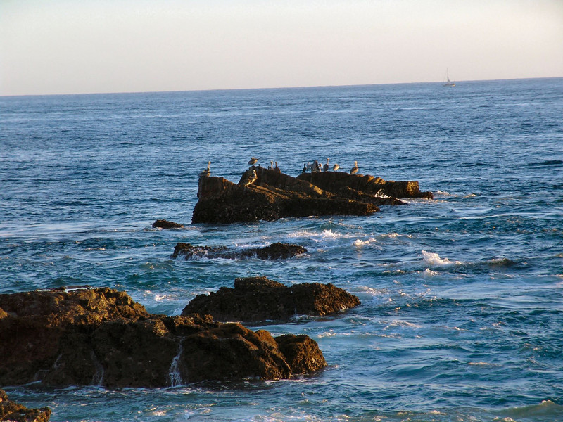 2-DSC00172 Photos of and around Cabo San Lucas Mexico by Deborah Carney