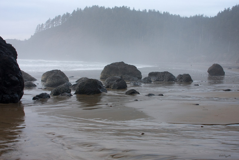 Indian Beach, Oregon in the Ecola State Park.