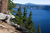 Watchful One: Crater Lake, Oregon. There is a log that has fallen on the crater wall that has a shape of a lizard with antlers.  (Something out of a Dr. Seuss book, no doubt)  He is watching.  Since the view is so spectacular, I wanted to stay and join him.
