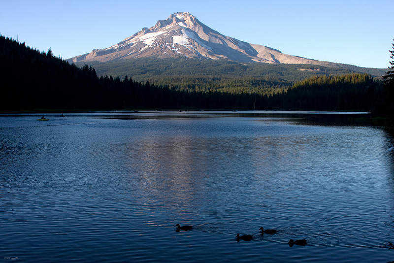 IMG_6381 - Trillium Lake in the late afternoon sun facing the South side of Mount Hood