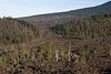 This early morning shot shows an old lava flow on the old McKenzie Pass Road.  Belknap Mt, the source, is in the upper right.  Lava, like water, seeks the lowest point resulting in 2 islands.  It is a harsh environment, the trees in the foreground are struggling to stay alive.
