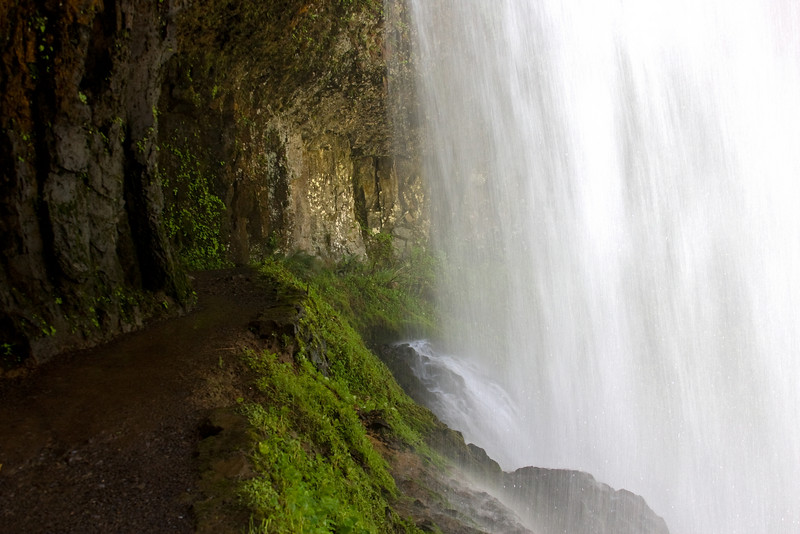 The trail goes behind a curtain of water.  Silver Falls State Park