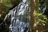 Ramona Falls<br /> -Deb<br /> 7/19/09