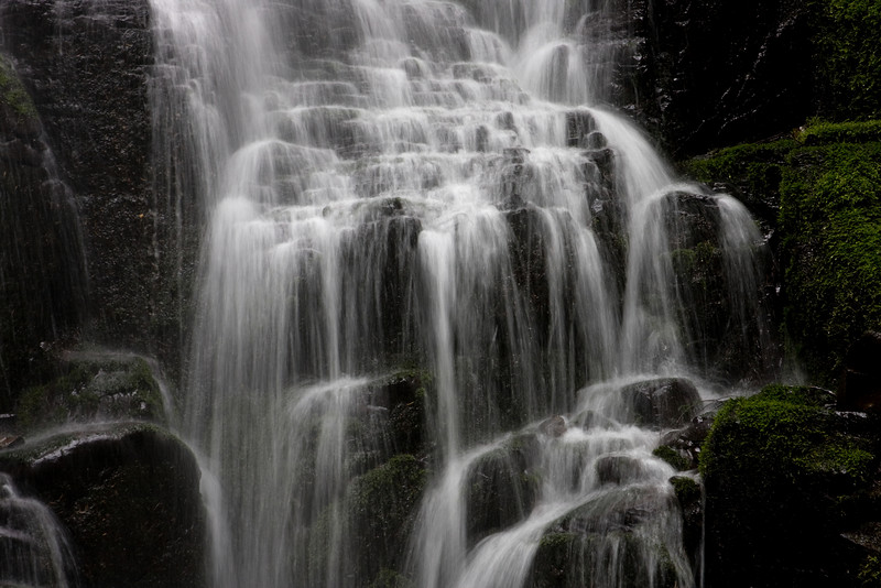 06-06-09: Today's photo was taken in the Columbia Gorge on the Wahkeena Falls loop.  This particular photo is a shot of Fairy Falls. -Deb