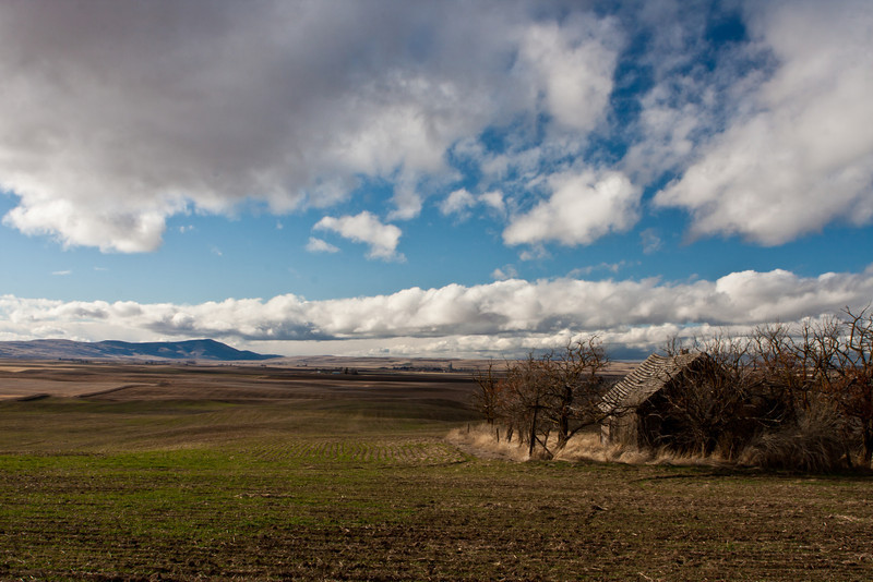 Goldendale Viewpoint<br /> The clouds looked like you could reach out and touch them today.<br /> <br /> ~Deb<br /> 1/14/2012