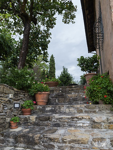 walkway to the farmhouse