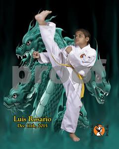 Luis1356-8