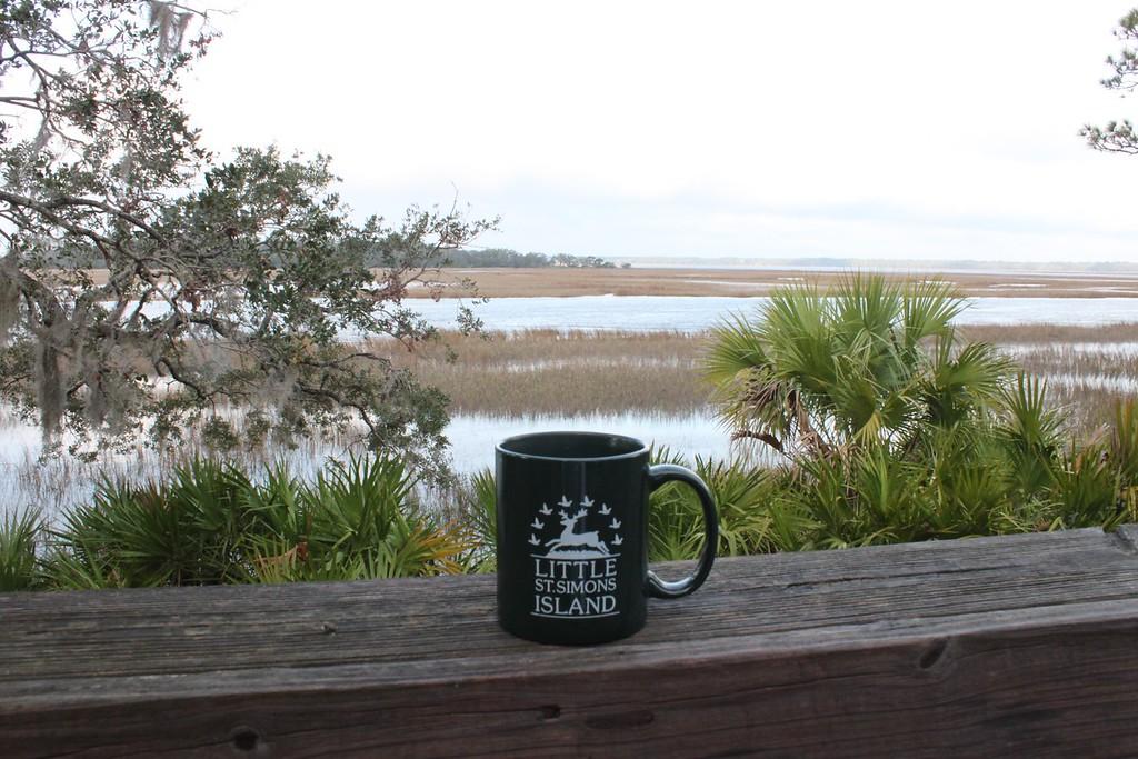 A mug sits on a railing overlooking the marsh