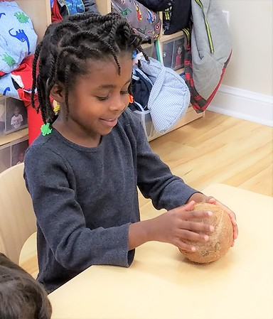 Going Coconuts in Pre-K Science!