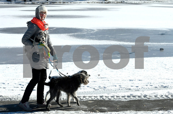 12/28/2017 Mike Orazzi | Staff Emma Veseskis walks with her dogs Pippin, Goose and Copeland while walking on a cold day in Stanley Quarter Park in New Britain Thursday.
