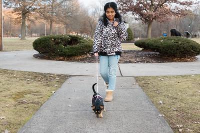 12/26/18  Wesley Bunnell | Staff  Fabian Moatesino, age 9, walks her dog Lumina down Memorial Boulevard on Wednesday afternoon.