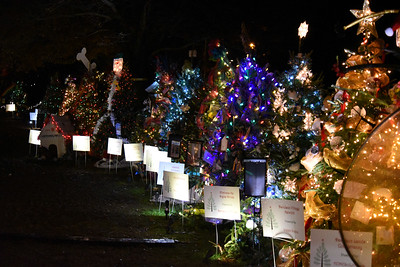 The trees on the right side of the Rotary Club of Davidson's Giving Village. This wonderful fundraiser for local nonprofit organizations in a favorite attraction for young and old visitors alike.