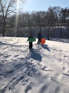Brady and Ian McDaniel had a blast sledding at Community Park in Effingham Tuesday.  Submitted by Heather McDaniel
