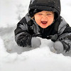 Truman playing in the snow for the first time. It's safe to say he had a great time and likes the taste of it!<br /> Submitted by Rachel Anderson