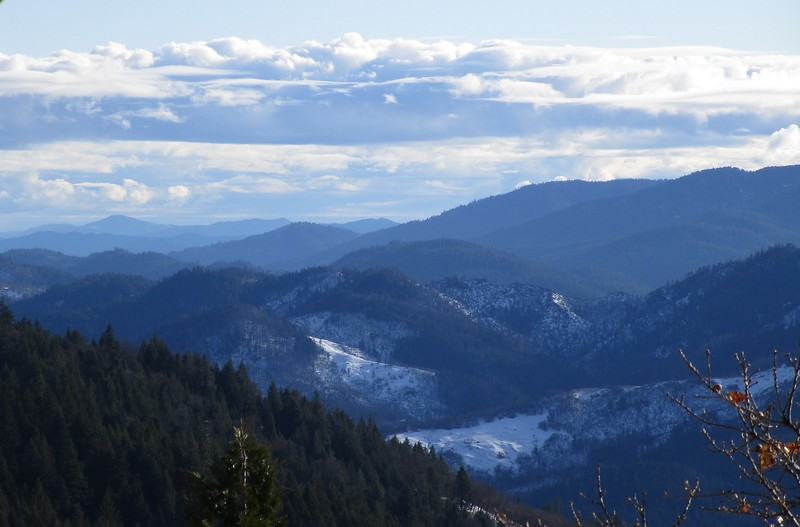 View from the ridge just through the forest, overlooking the Van Duzen and Mad River drainage.