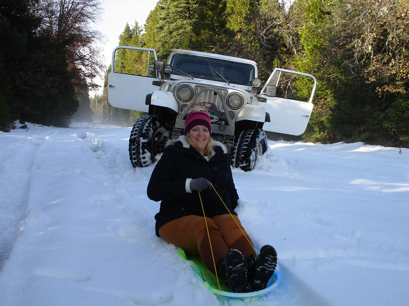 Trees murdered, it was sleddin' time!  Meredith takes a turn.