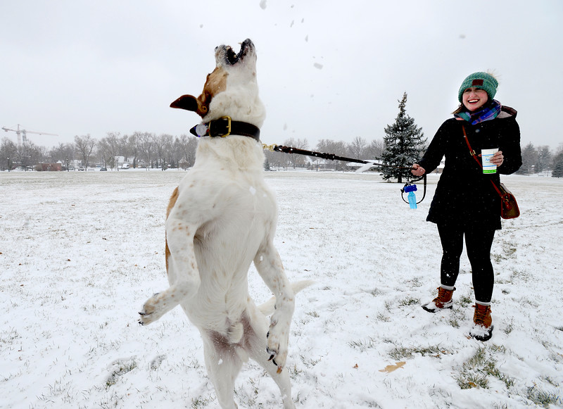 Roosevelt Park Snow