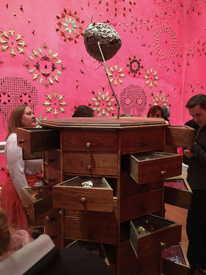 This room was marvelous. This is a rotating toolbox and the open drawers contained tiny dioramas featuring mostly beetles. The installation is by Jennifer Angus.