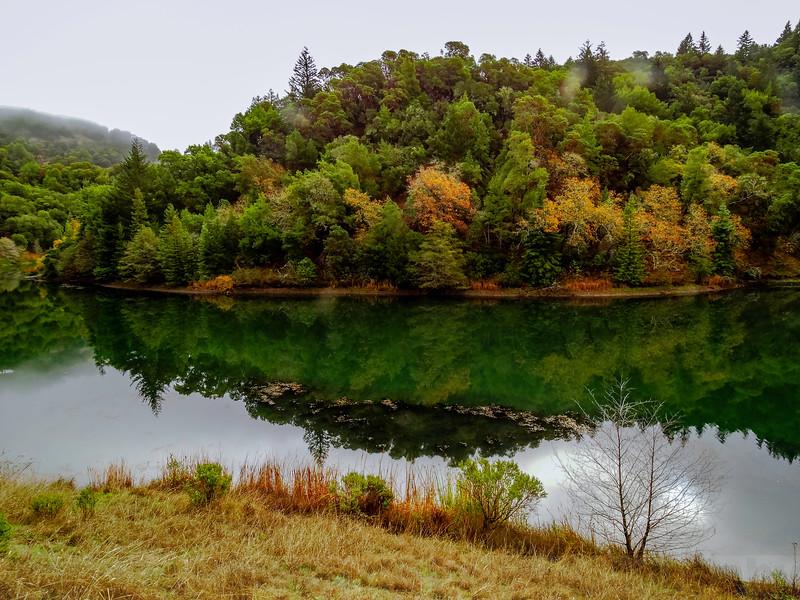 Phoenix Lake: Morning Reflection