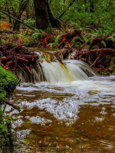 Upper Cataract Creek