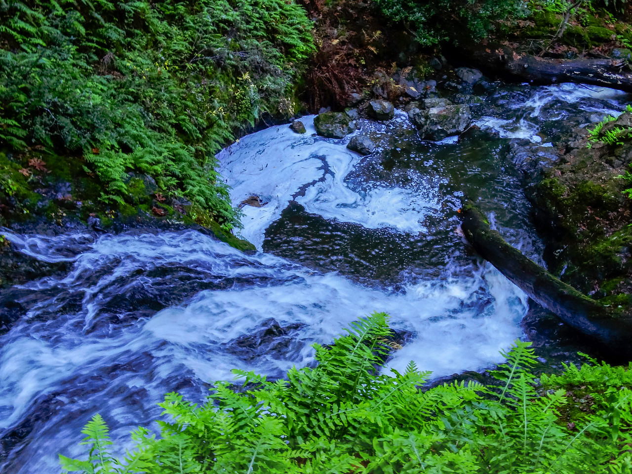 The brink of Midway Falls, Cataract Creek