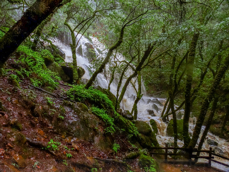 Laurel Dell Falls