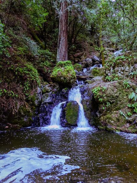 Helen Markt Falls on Catartact Creek