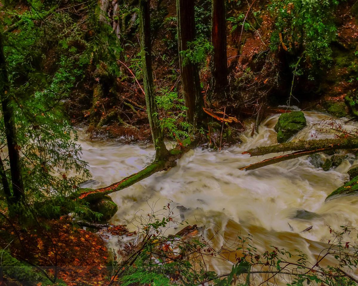High Flow on Cataract Creek