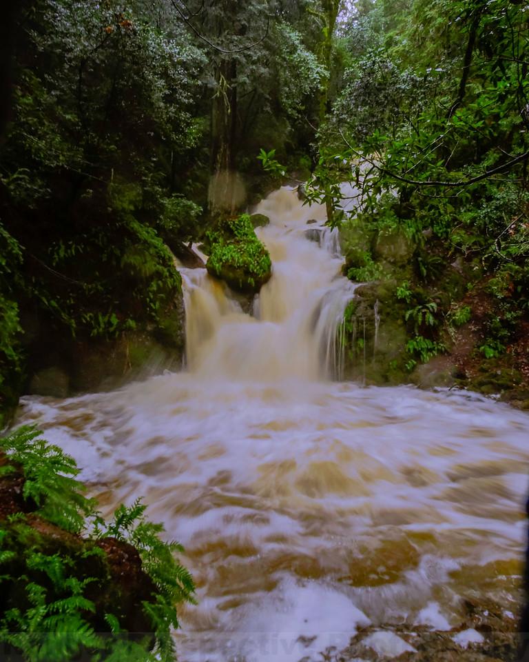 High Flow at Helen Markt Falls