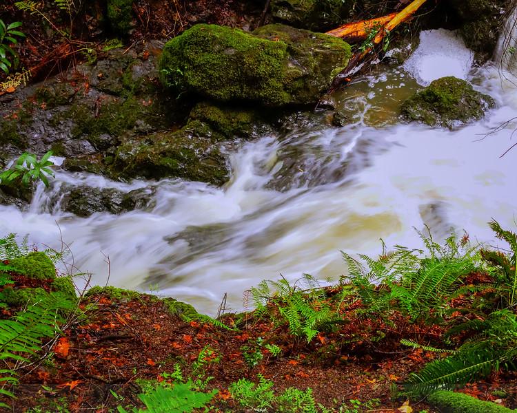 Cataract Creek Close-up, version 1