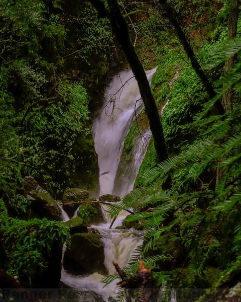 Over the plunhe-Cataract Falls