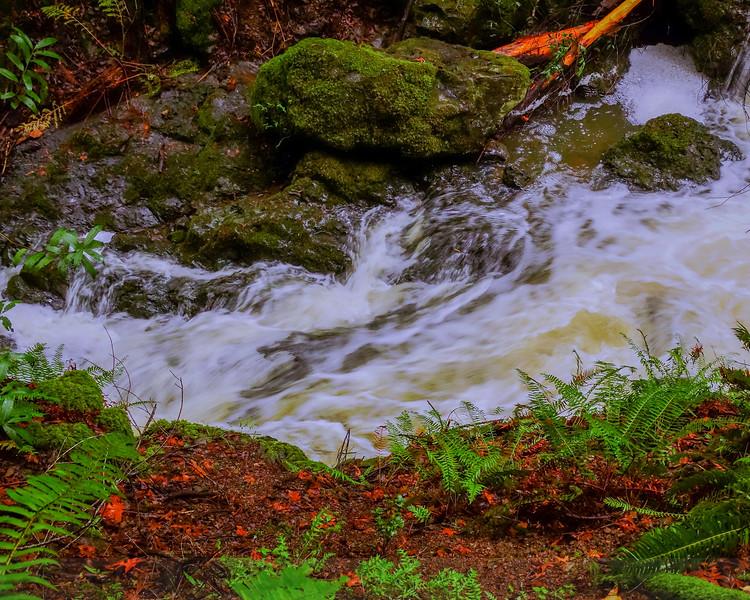 Cataract Creek Close-up, version 2