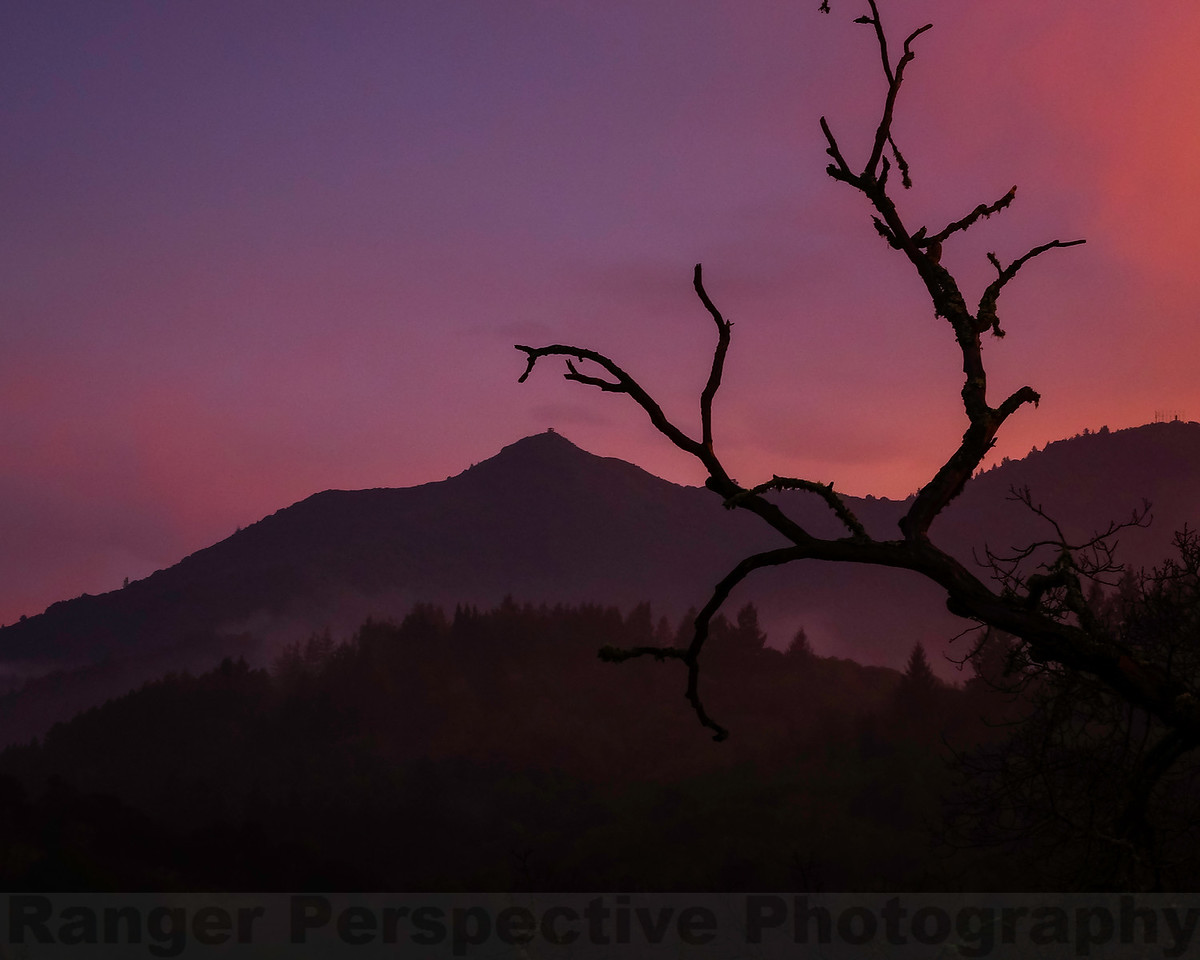 Mount Tam Twilight
