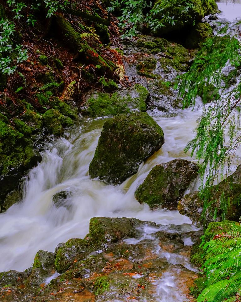 Cataract Creek just above Alpine