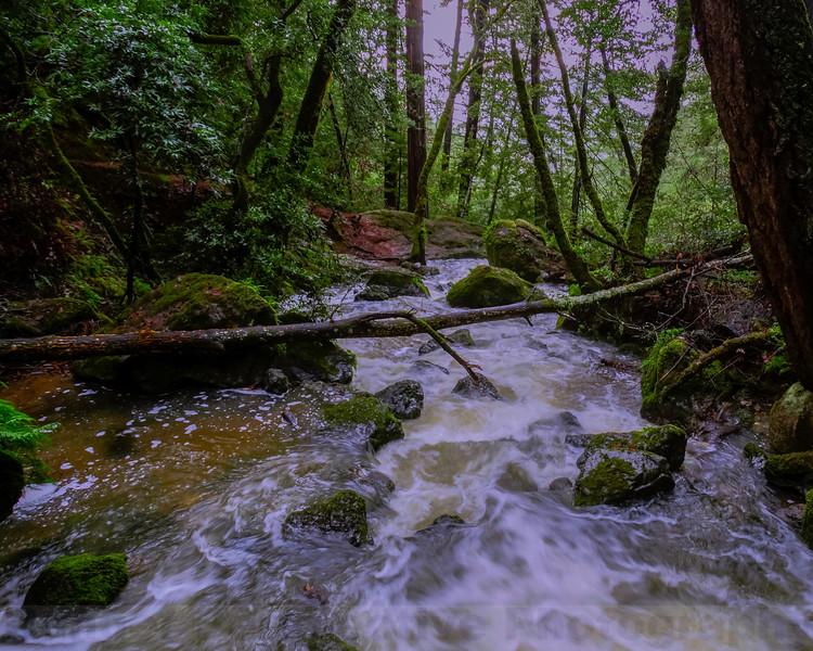 Cataract Creek below Cataract Bridge