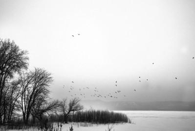 Faint Horizon