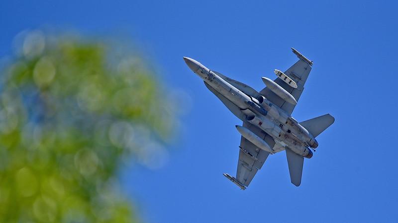 McDonnell Douglas F/A-18B Hornet.
