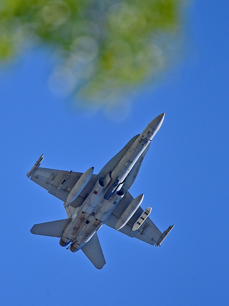 McDonnell Douglas F/A-18B Hornet. Image rotated.