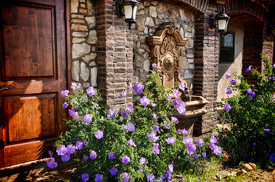 TUSCANY COTTAGE & LILACS