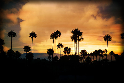 MORNING SUNRISE,  MOUNTAINS &  PALM TREES, OCEANSIDE, CA