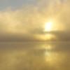 Foggy Iowa Scenic